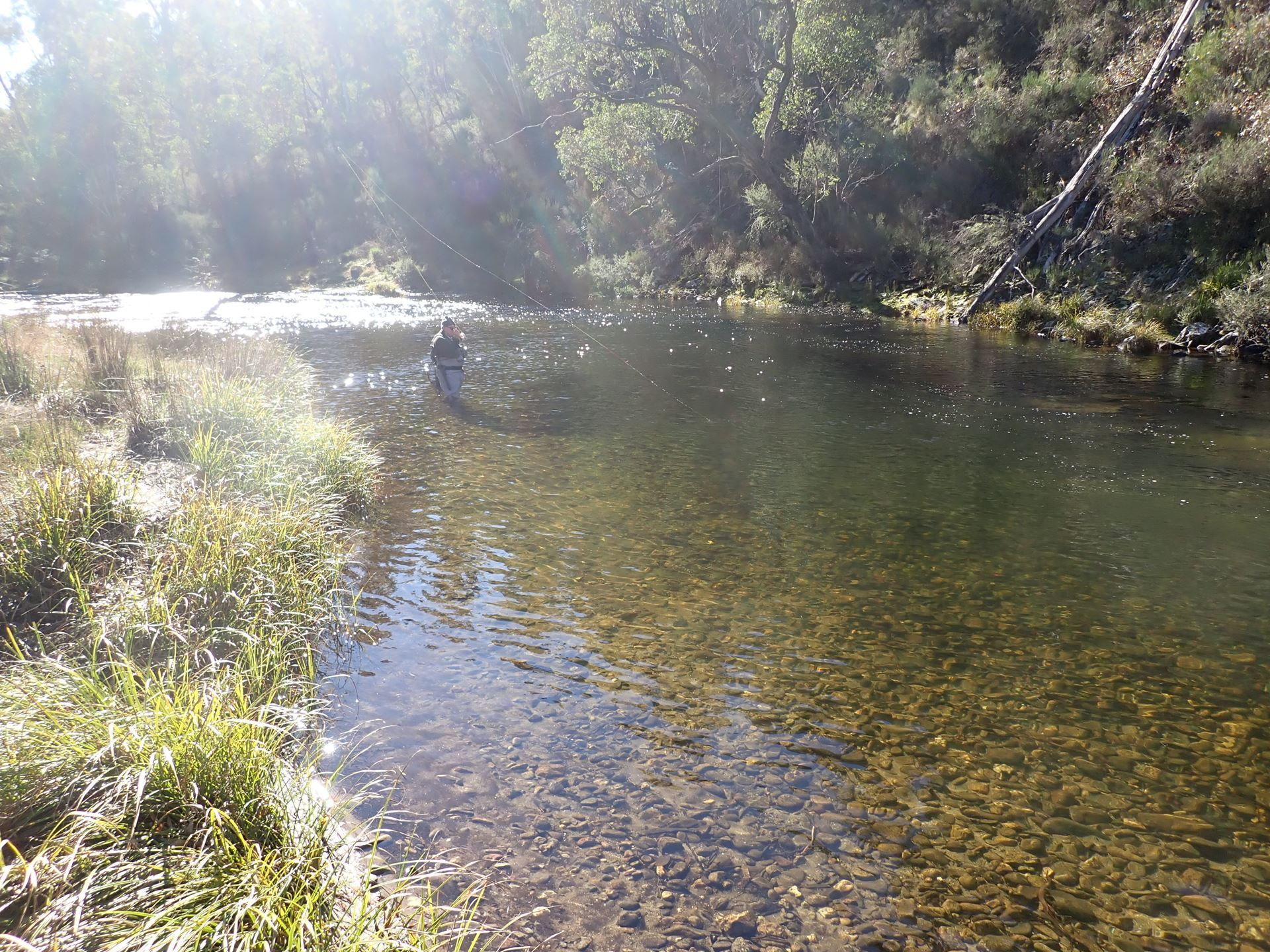 The first night having dinner at The Blue Duck Inn, during our trip to Big River (Upper Mitta Mitta River) in May 2021.
